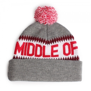 9558feb52d1 THE QUIET LIFE Middle of Nowhere Pom Beanie - Grey